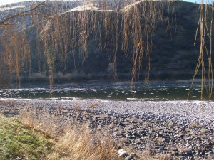Ice on the Salmon River