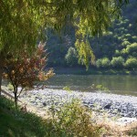 The Salmon River and beach by Swiftwater RV Park in north central Idaho