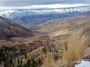 Hells Canyon National Recreation Area as seen from Pittsburg Saddle Viewpoint
