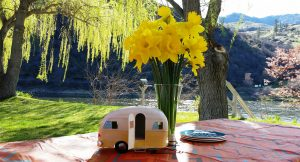 Swiftwater RV Park's Silent Auction